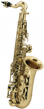ROY BENSON children Eb alto saxophone AS-201